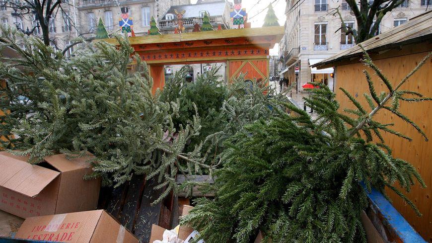 Une quarantaine de points de collecte pour sapins naturels usagés seront à disposition à Bordeaux