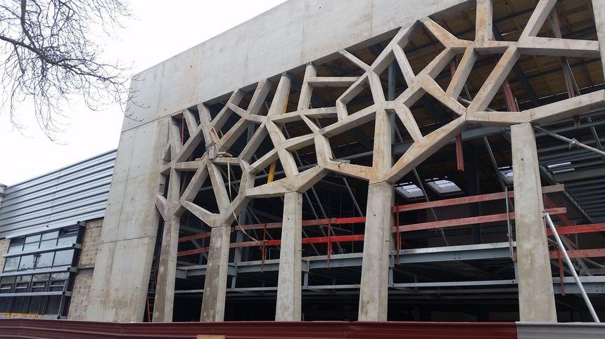 La façade du cinéma Le Palace d'Epernay représentera des ceps de vigne