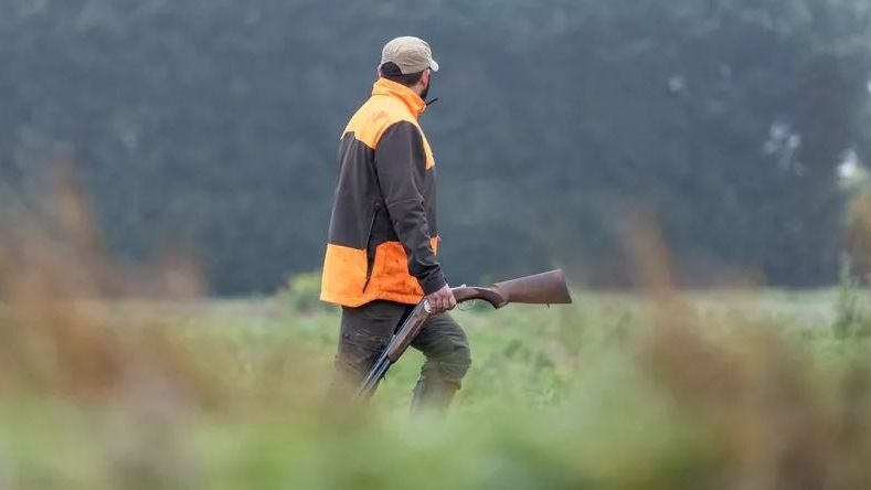 Un chasseur blessé au cou par un de ses collègues de battue ce matin à Sorde-l'Abbaye