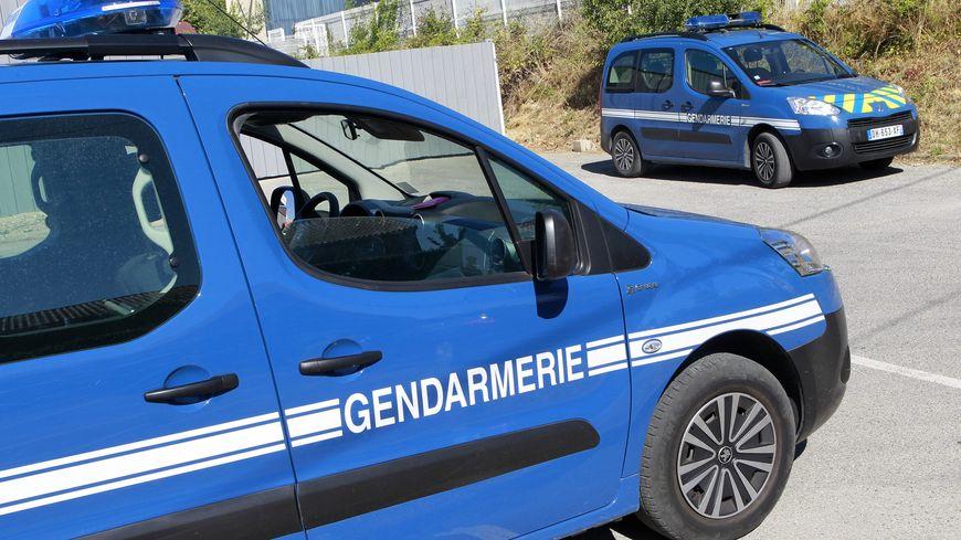 Les gendarmes d'Indre-et-Loire ont interpellé un automobiliste, accusé d'avoir menacé un autre avec un pistolet à billes, mercredi à Lussault.