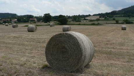 Sécheresse : les céréaliers du Lot-et-Garonne viennent en aide aux éleveurs de la Haute-Vienne