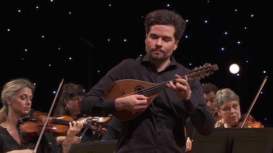 Vivaldi : Concerto pour mandoline  (Julien Martineau / Rinaldo Alessandrini)