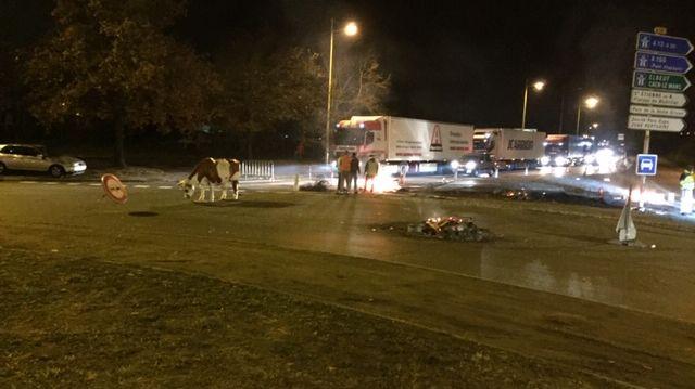 Le rond-point des Vaches est le haut lieu de la contestation des Gilets Jaunes dans l'agglomération rouennaise