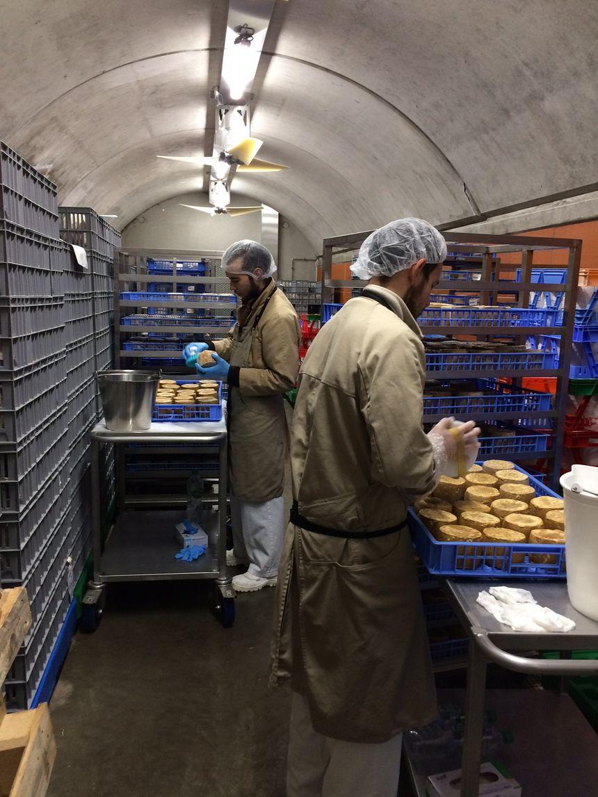 Les soins apportés aux fromages par les employés de la Maison Mons