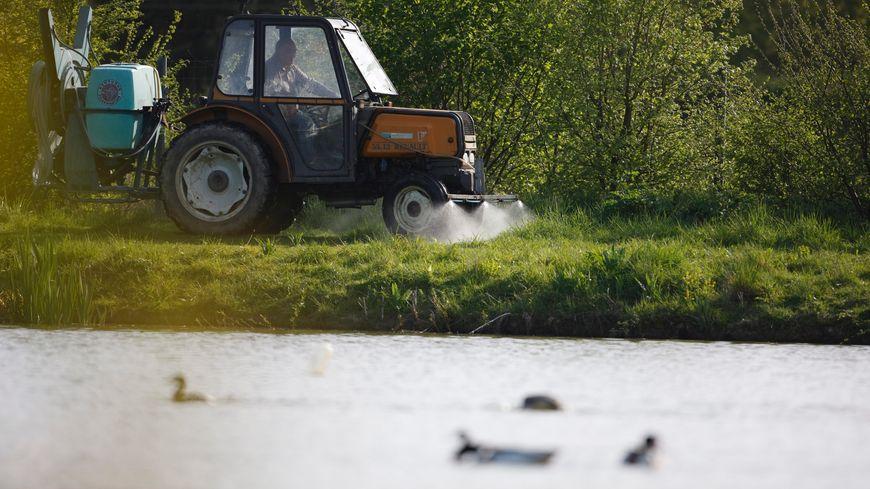 Un tracteur pulvérisant des pesticides au bord d'un cours d'eau (image d'illustration).