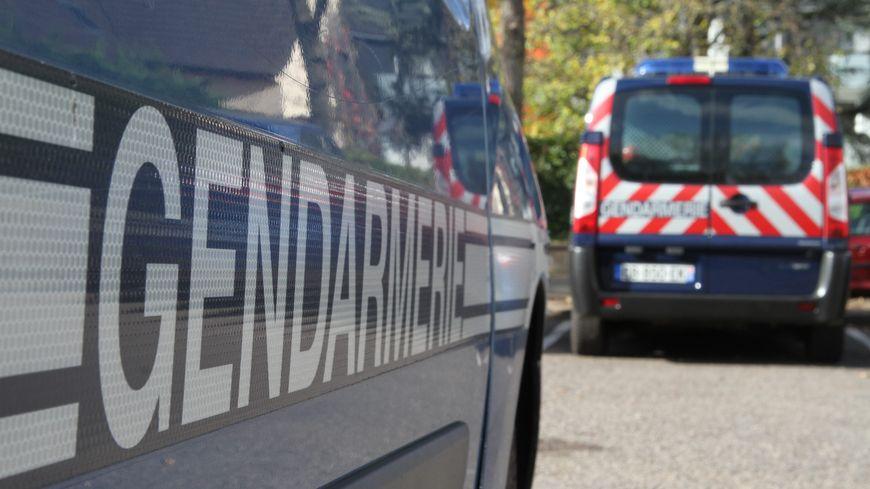 Véhicules de gendarmerie. Photo d'illustration.