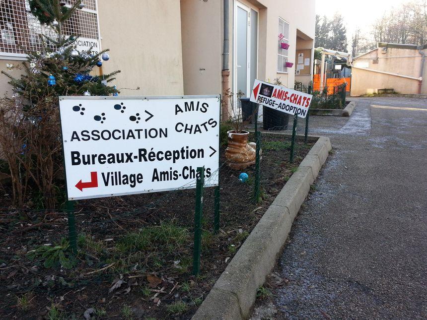 Les bureaux d'accueil de la SPA de Saint Etienne