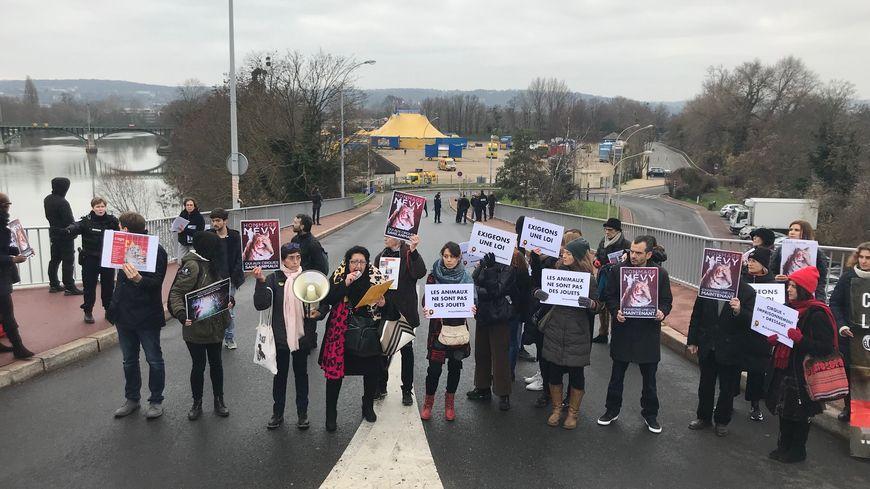 Une association de défense des animaux manifeste devant le cirque de Rome à Chatou (Yvelines)