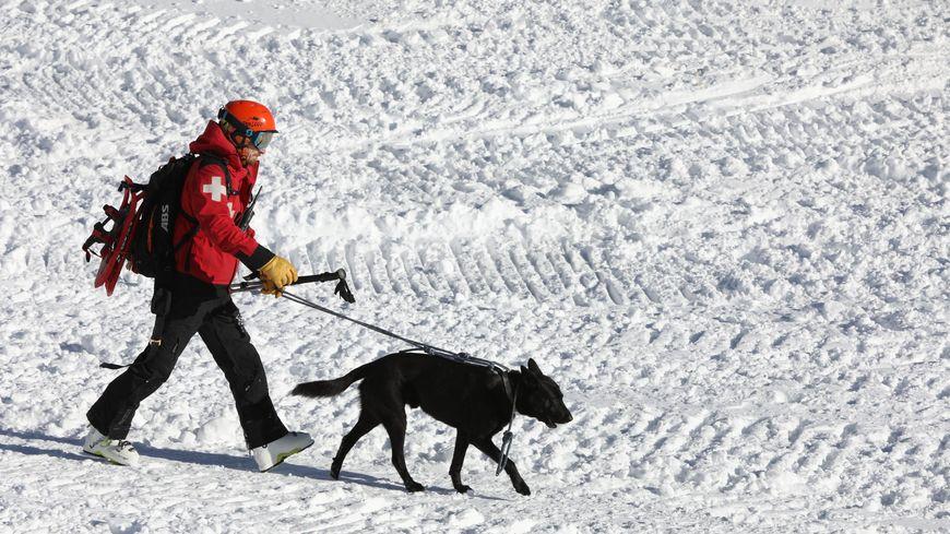 L'enfant de douze ans a été retrouvé par un chien des secouristes