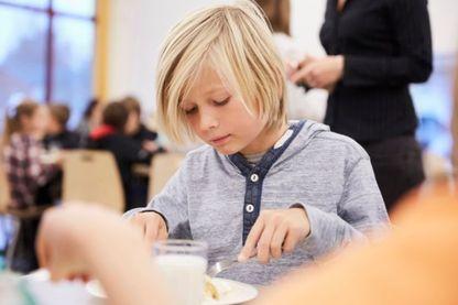 Les cantines scolaires sont particulièrement concernées par le gaspillage alimentaire