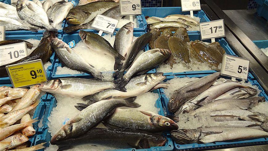 Les poissons vendus dans la grande distribution seraient issus d'une pêche non-durable