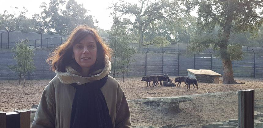 Véronique Darrieulat devant l'enclos des loups