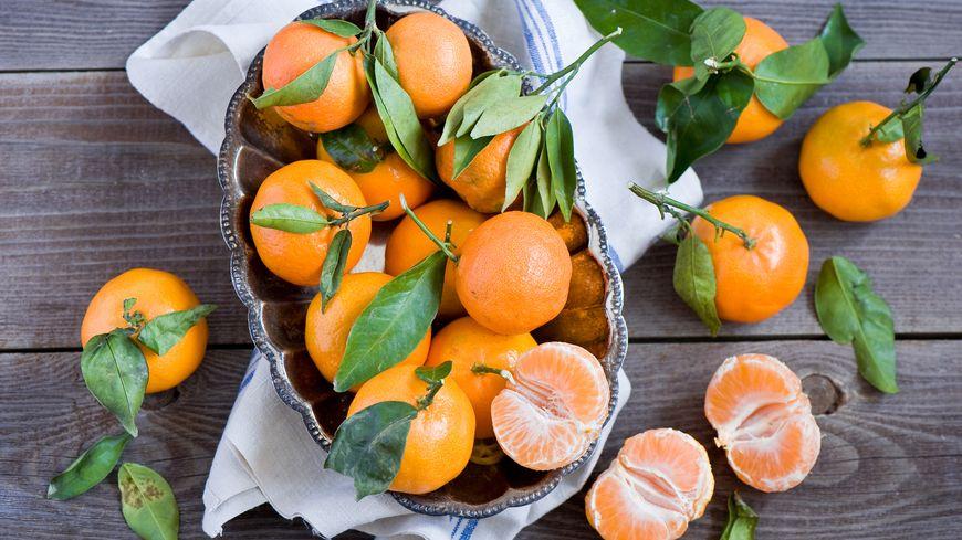 Clémentines, mandarines et clémenvilla, citron