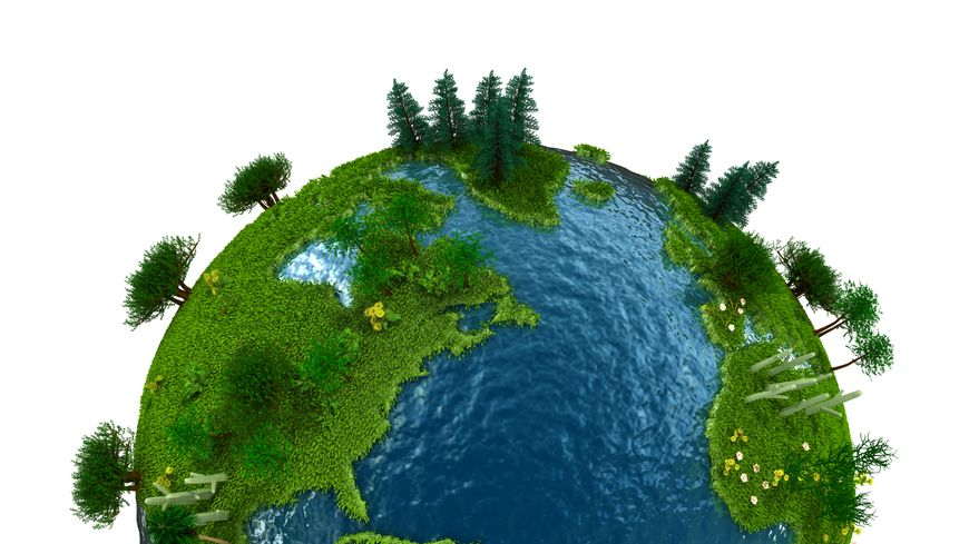 Quelles sont vos propositions pour participer à la transition écologique ?