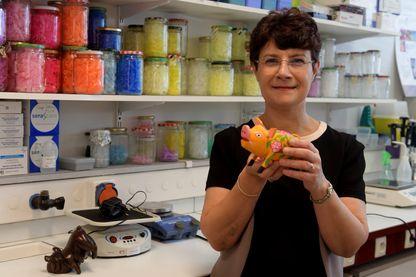 Isabelle Oswald, Grand prix de la recherche agronomique 2018, spécialiste des mycotoxines .
