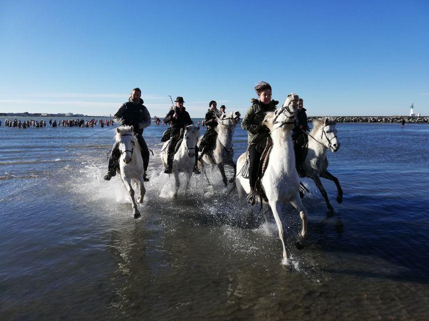 Des cavaliers sur des chevaux camarguais se sont joints à la fête.