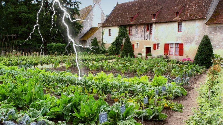 Cultiver son potager grâce à l'électroculture