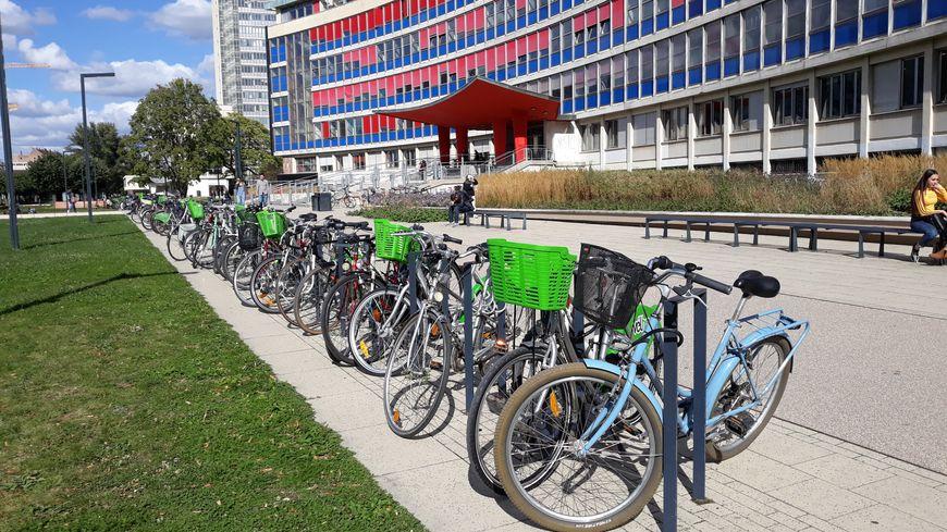 L'université de Strasbourg accueille de nombreux étudiants étrangers