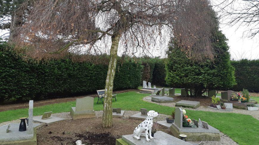 C'est à Chemy qu'a ouvert le premier cimetière pour animaux de France. Environ 2000 bêtes y ont été enterrées depuis 1971.