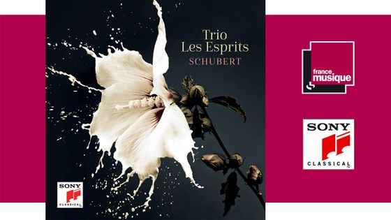 Trio Les Esprits Schubert