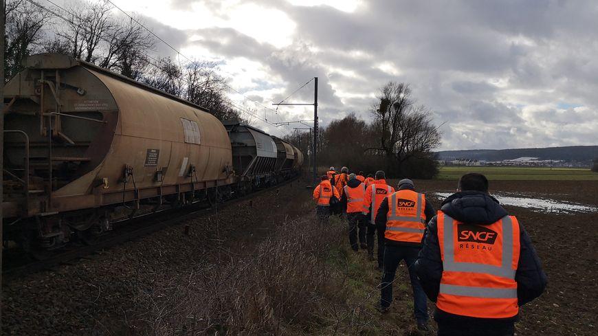 En quête de traces d'animaux le long de la voie ferrée Dijon-Beaune