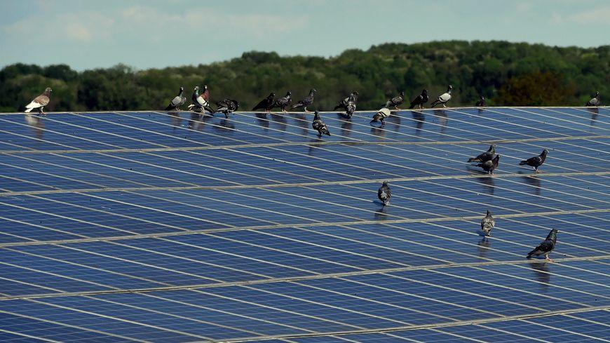 Illustration de panneaux photovoltaïques