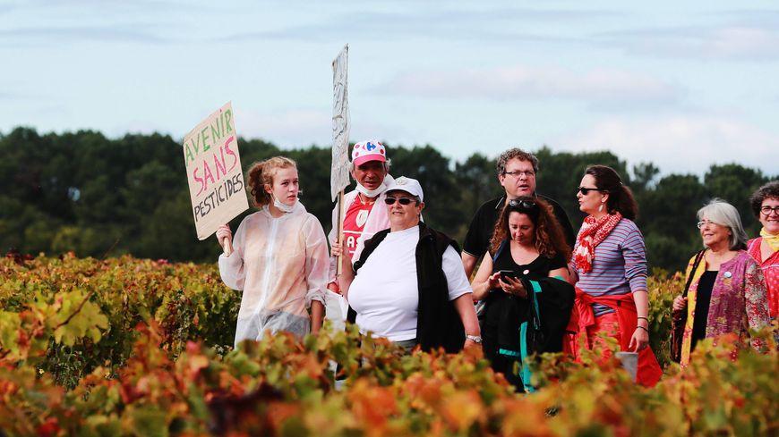 Manifestation contre les pesticides dans les vignes