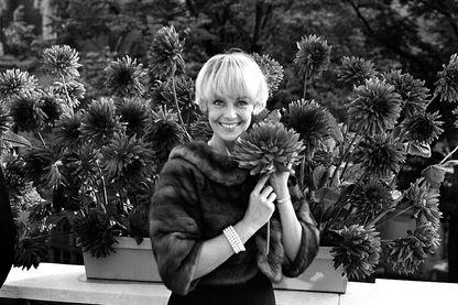 Dany Robin présente un nouveau dahlia baptisé 'Beaux Jours de France', à Paris, France le 23 septembre 1965