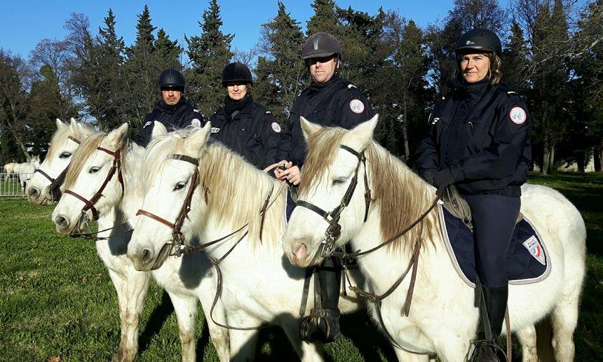 Les policiers cavaliers de la Brigade Equestre de la Police Nationale de Vaucluse