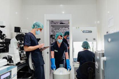 Dans une clinique de Madrid, où des femmes viennent faire congeler leurs ovocytes