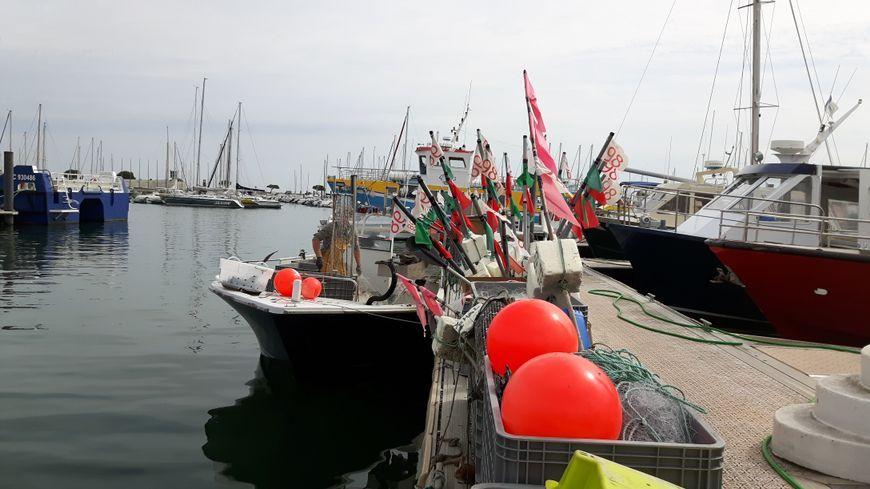 Port de pêche d'Arachon