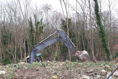 Forêt de Rambouillet : 4,3 ha vont être déboisés
