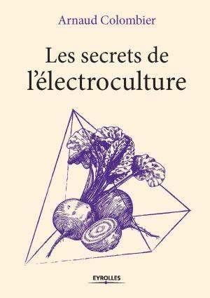 Couverture du livre d'Arnaud Colombier