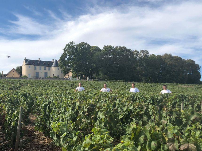 Les étudiantes passionnées ont fait les vendanges en Bourgogne ou parcouru le Val de Loire à vélo