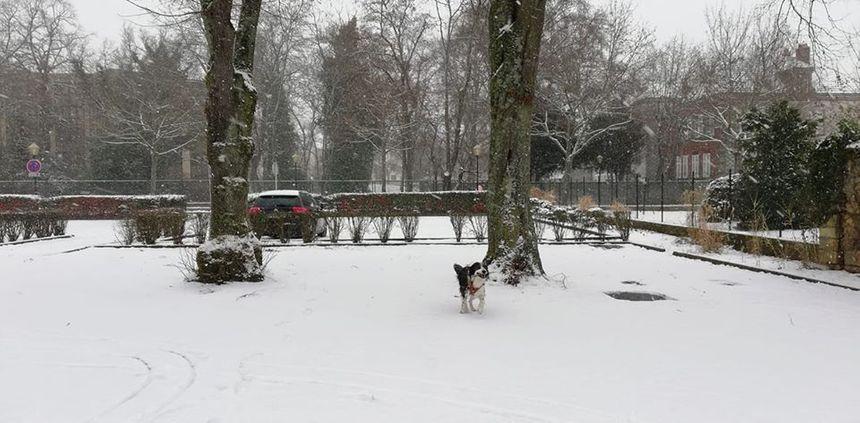 Pascal profite du parc de Montigny