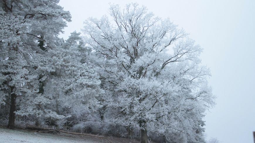 Les chutes de neige sont attendues en fin de journée ce mardi (illustration).