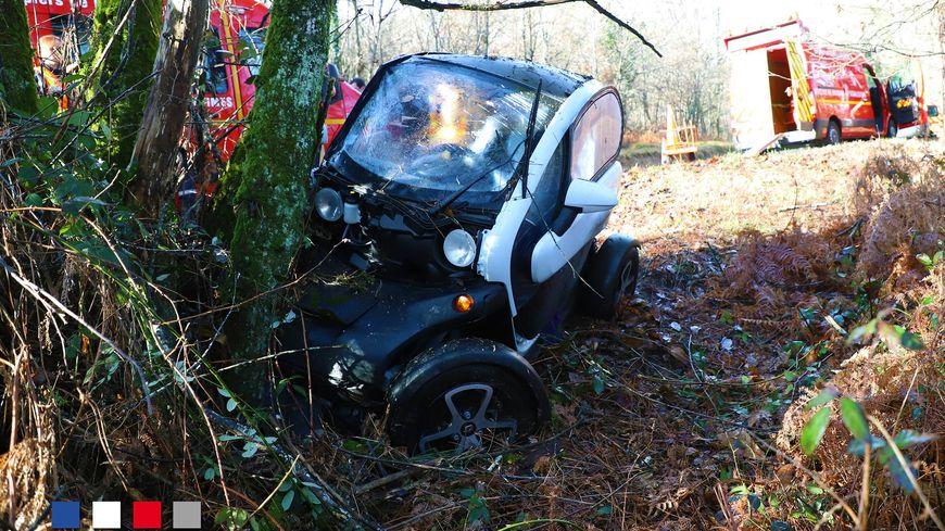 La voiture électrique a fini sa course contre un arbre le long de la départementale 38