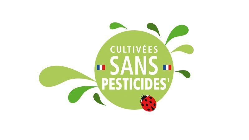 De plus en plus de produits agricoles sont cultivés sans pesticides pour répondre à la demande des consommateurs