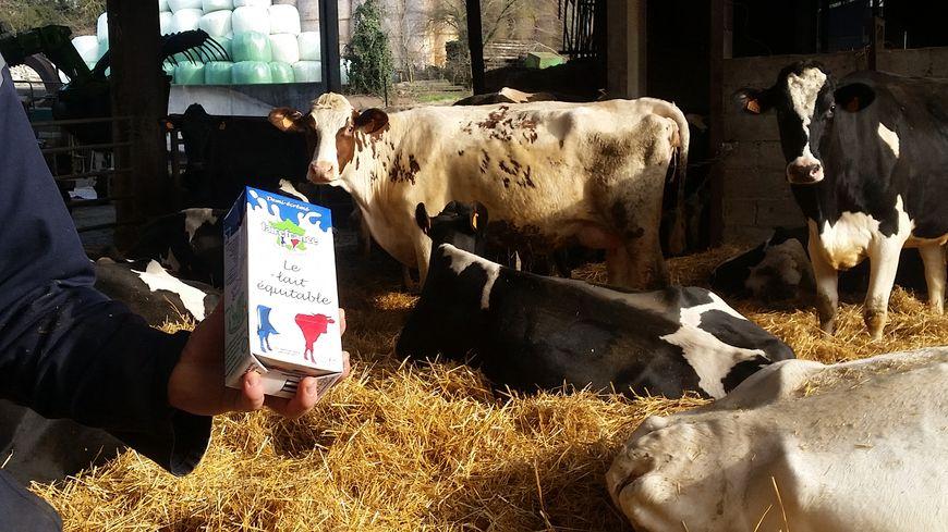 Le lait équitable Faire France rémunère les éleveurs à un prix plus juste