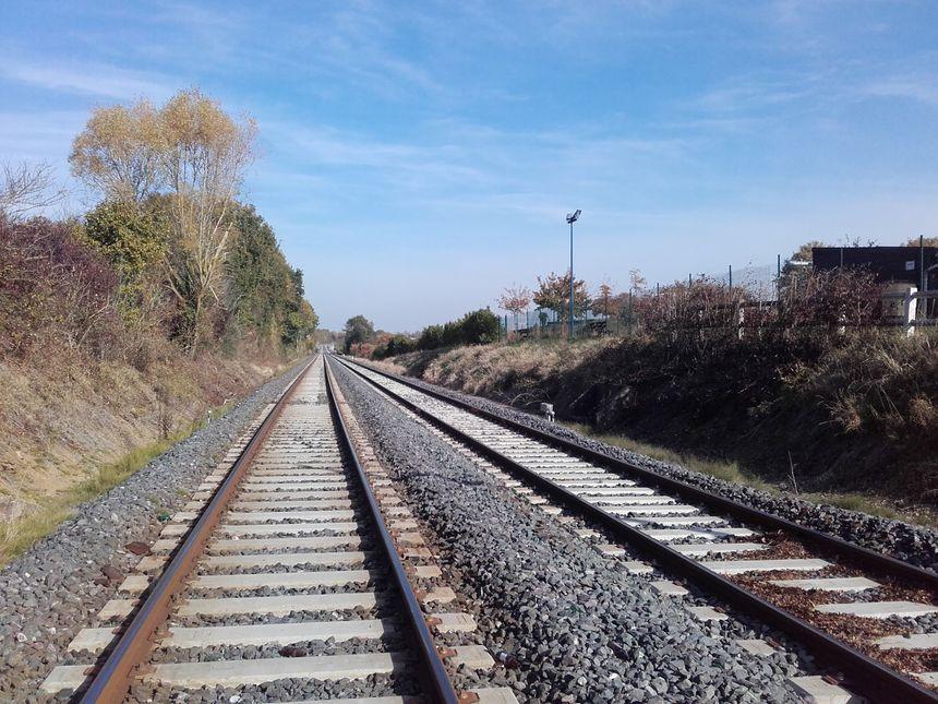 Petite ligne de chemin de fer