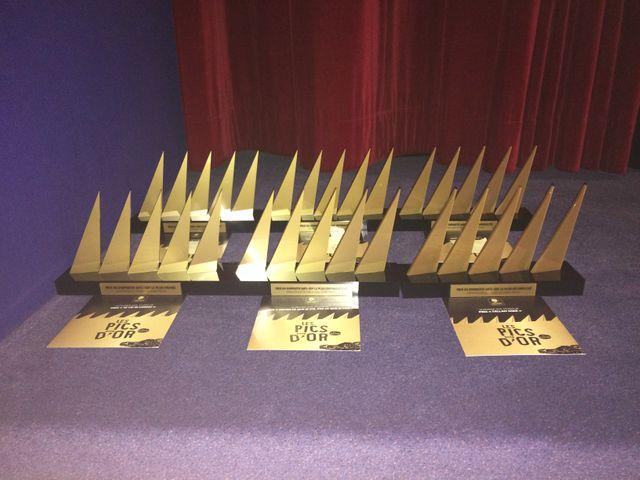 """Lors de la cérémonie, """"Les Pics d'or"""" ont été décernés à six lauréats."""