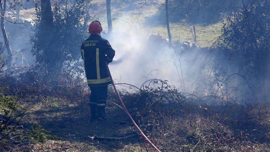 1650 hectares parcourus par les flammes, le bilan toujours provisoire des incendies en Corse