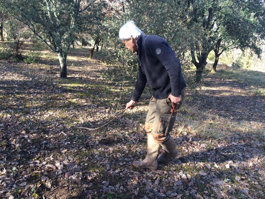Jean Marie Chanquoi  traque les truffes à la mouche dans sa truffière à Grèzes