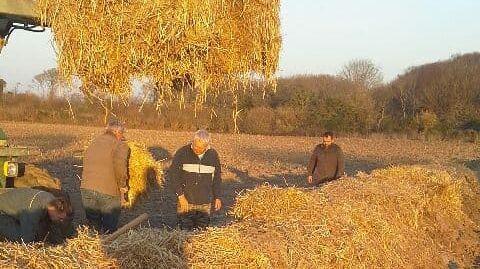 Les chasseurs coatméaliens prêtent main forte à la reconstruction des talus