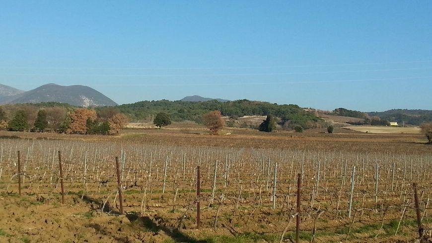 C'est dans cette collines de Valréas que le poulailler de 29990 poules doit être construit.