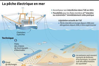 La pêche électrique en mer, processus et législation de l'UE après l'accord pour son interdiction à l'été 2021.