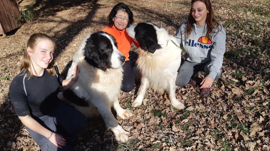 Rosco et Cheyenne, avec Peggy Sauvignat leur éleveuse, iront au salon de l'agriculture
