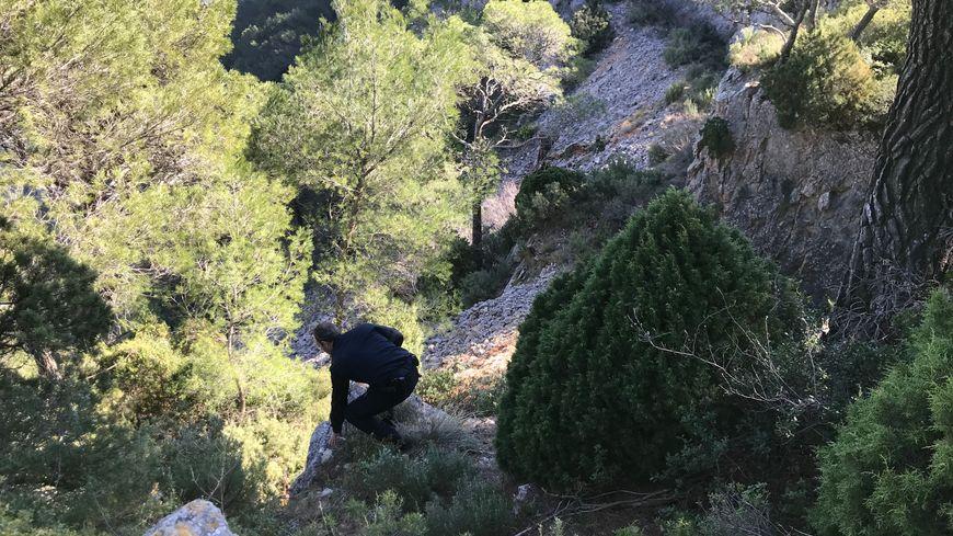 Un dispositif déployé au Mont Faron pour retrouver un jeune de 17 ans