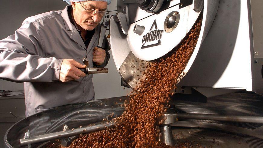 Un torréfacteur vérifie les grans de café en train de refroidir sur un tamis (image d'illustration).