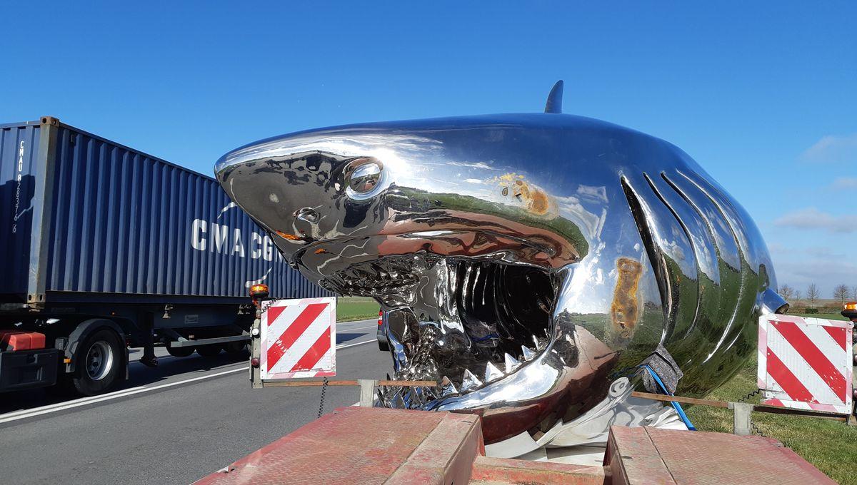 Étonnant PHOTOS- Un requin de dix mètres sur les routes de l'Eure XK-21